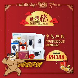 Picture of Hamper RM388